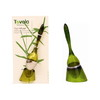 Tovolo Tea Infuser  - Green